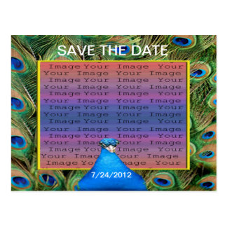 Peacock Wedding Save The Date Postcard
