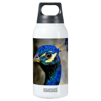 Peacock Wildlife Photo 10 Oz Insulated SIGG Thermos Water Bottle