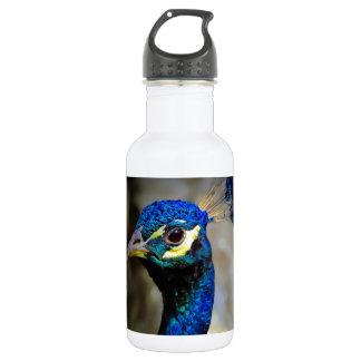 Peacock Wildlife Photo Water Bottle