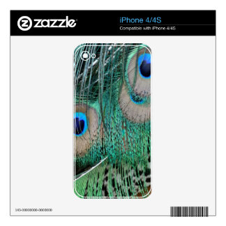 Peacock Wings And Tail Feathers iPhone 4S Decals