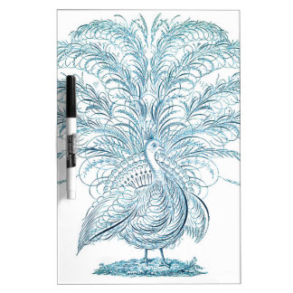 Peacock with Outstretched Feathers Dry-Erase Board