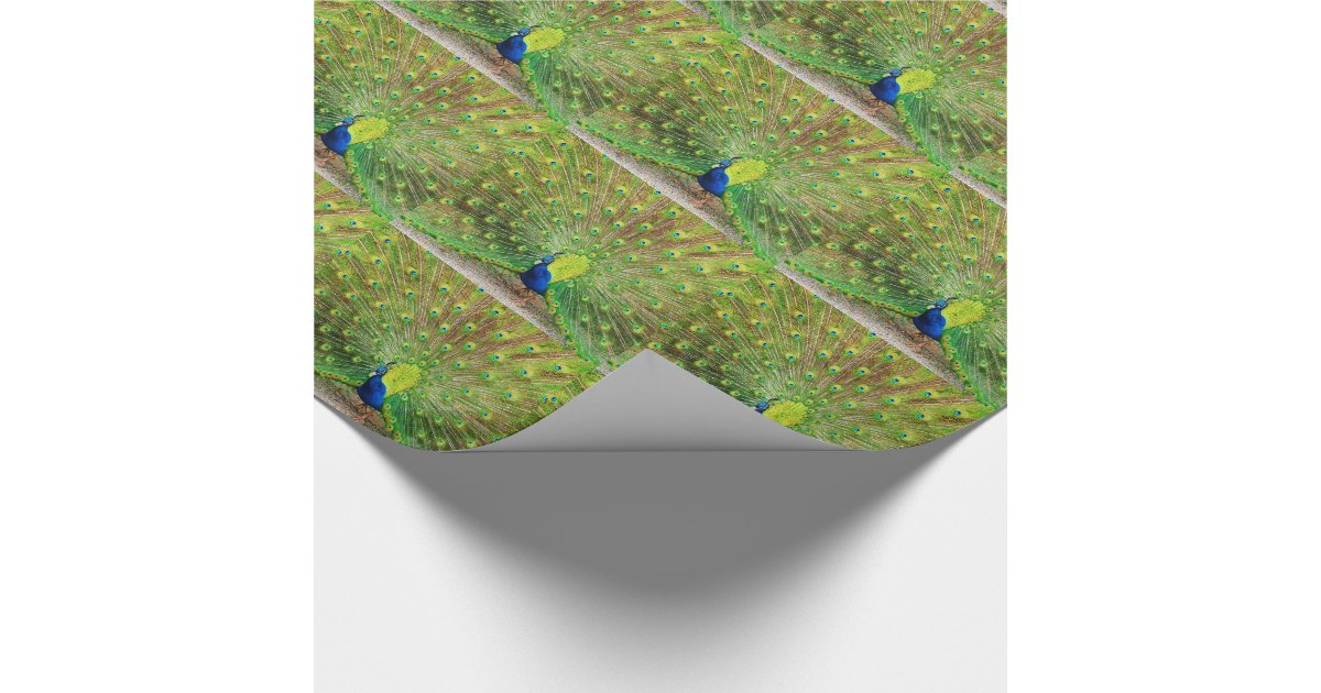 peacock wrapping paper Find great deals on ebay for peacock wrapping paper and peacock paper shop with confidence.
