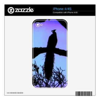 Peacock Zazzle Skin Decal For iPhone 4S