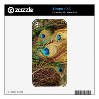 Peacock Zazzle Skin Decals For iPhone 4