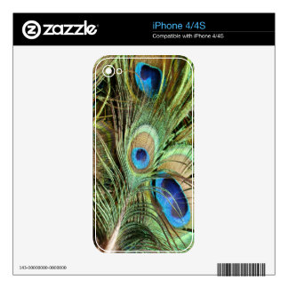 Peacock Zazzle Skin Skins For The iPhone 4S