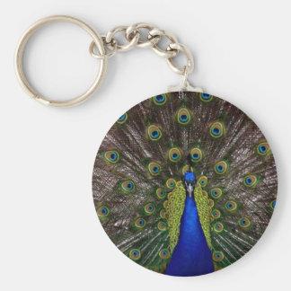 peacockfanfare keychain