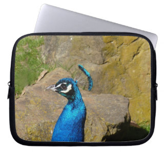 Peacock's Portrait Laptop Sleeves