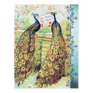 Peacocks:  You Color My World Postcard