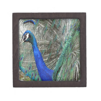 Peafowl Art Jewelry Box
