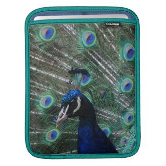 Peafowl Bird iPad Sleeve