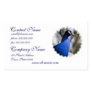 Peafowl Business Card