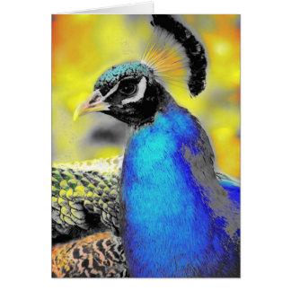 Peafowl Card