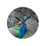 Peafowl Clock
