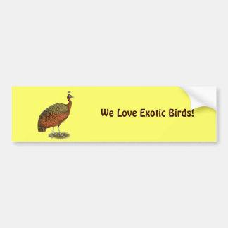 Peafowl:  Congo Peahen Etiqueta De Parachoque