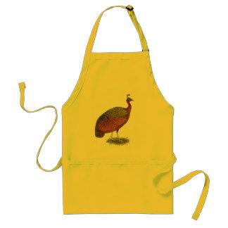 Peafowl:  Congo Peahen Delantal