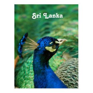 Peafowl de Sri Lanka Postal
