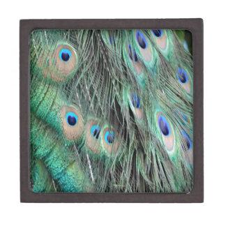 Peafowl Delight Jewelry Box
