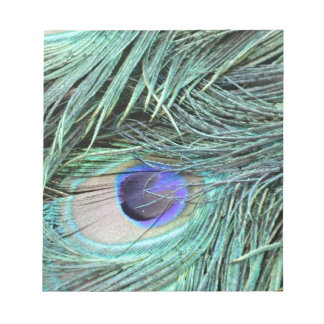 Peafowl Feather Eye Notepad