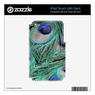 Peafowl Feathers Green And Blue Eyes iPod Touch 4G Decals