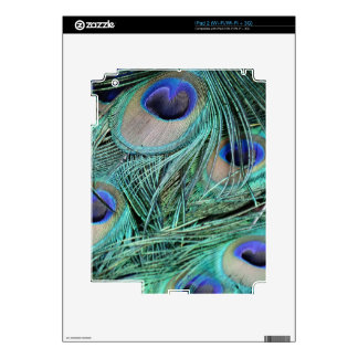 Peafowl Feathers Green And Blue Eyes Skin For iPad 2