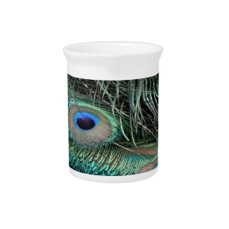Peafowl Feathers iridescent eye   spots Beverage Pitchers