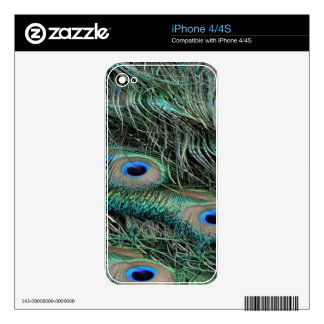 Peafowl Feathers iridescent eye   spots iPhone 4 Decals