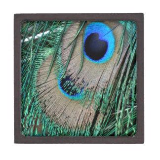 Peafowl Feathers Keepsake Box