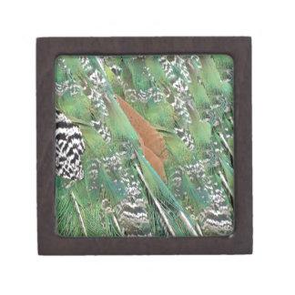 Peafowl Feathers Mixed Colors Keepsake Box