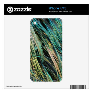 Peafowl Feathers No Eyes Colorful iPhone 4S Skins