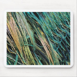 Peafowl Feathers No Eyes Colorful Mouse Pad