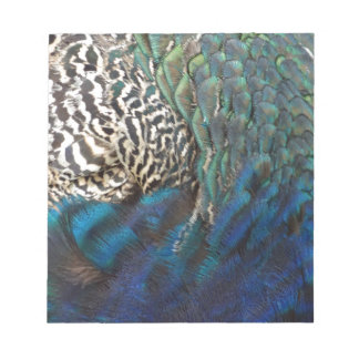 Peafowl Feathers Of All Colors Notepad