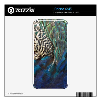 Peafowl Feathers Of All Colors Decal For The iPhone 4S