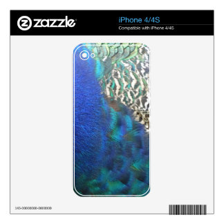 Peafowl Feathers Rich In Colors Decal For iPhone 4