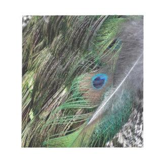 Peafowl Green Grail Notepad