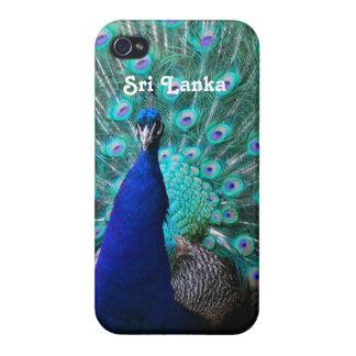 Peafowl in Sri Lanka iPhone 4/4S Cover