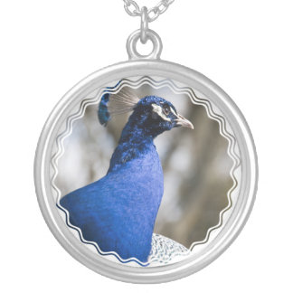 Peafowl Necklace