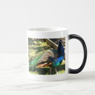 Peafowl ~ Peacock Coffee Mug