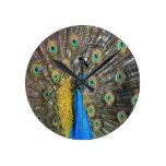 peafowl peacock peace calm joy round wall clock