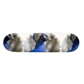 Peafowl Skateboard