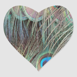 Peafowl Tail Feathers Heart Sticker