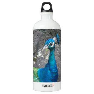 Peafowl Water Bottle