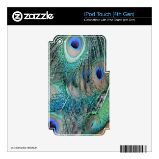 Peafowl Wing Feathers Skins For iPod Touch 4G