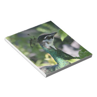 Peahen Profile Notepad
