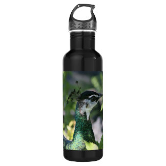 Peahen Profile Stainless Steel Water Bottle