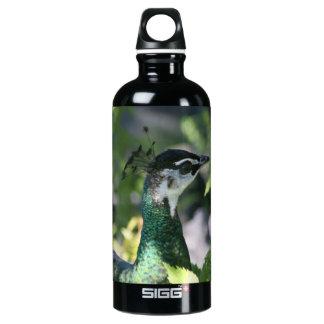 Peahen Profile Water Bottle
