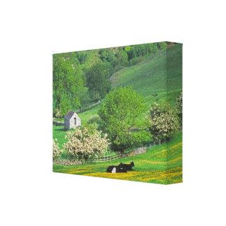 Peak District Stretched Canvas Print