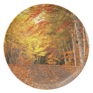 Peak Fall Foliage Season in the U. P. Dinner Plate