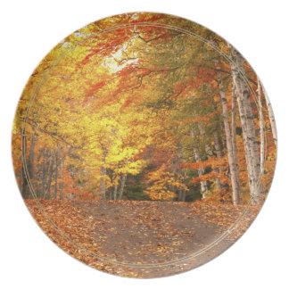 Peak Fall Foliage Season in the U. P. Party Plates