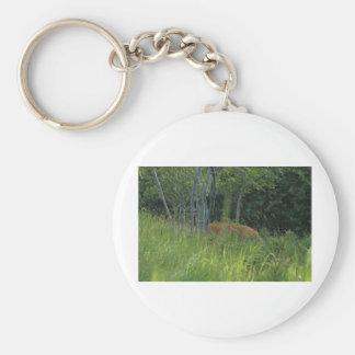 Peaking deer keychain