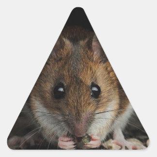 Peanut the Wood Mouse Triangle Sticker